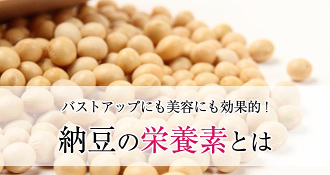 納豆の栄養素とは
