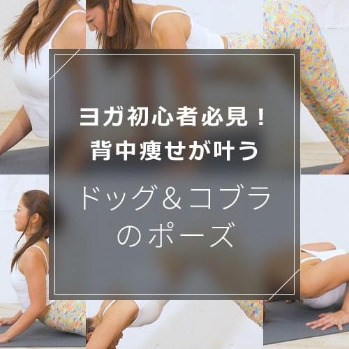 ドッグ&コブラのポーズのやり方を動画で解説!効果を上げる筋肉の使い方のイメージ